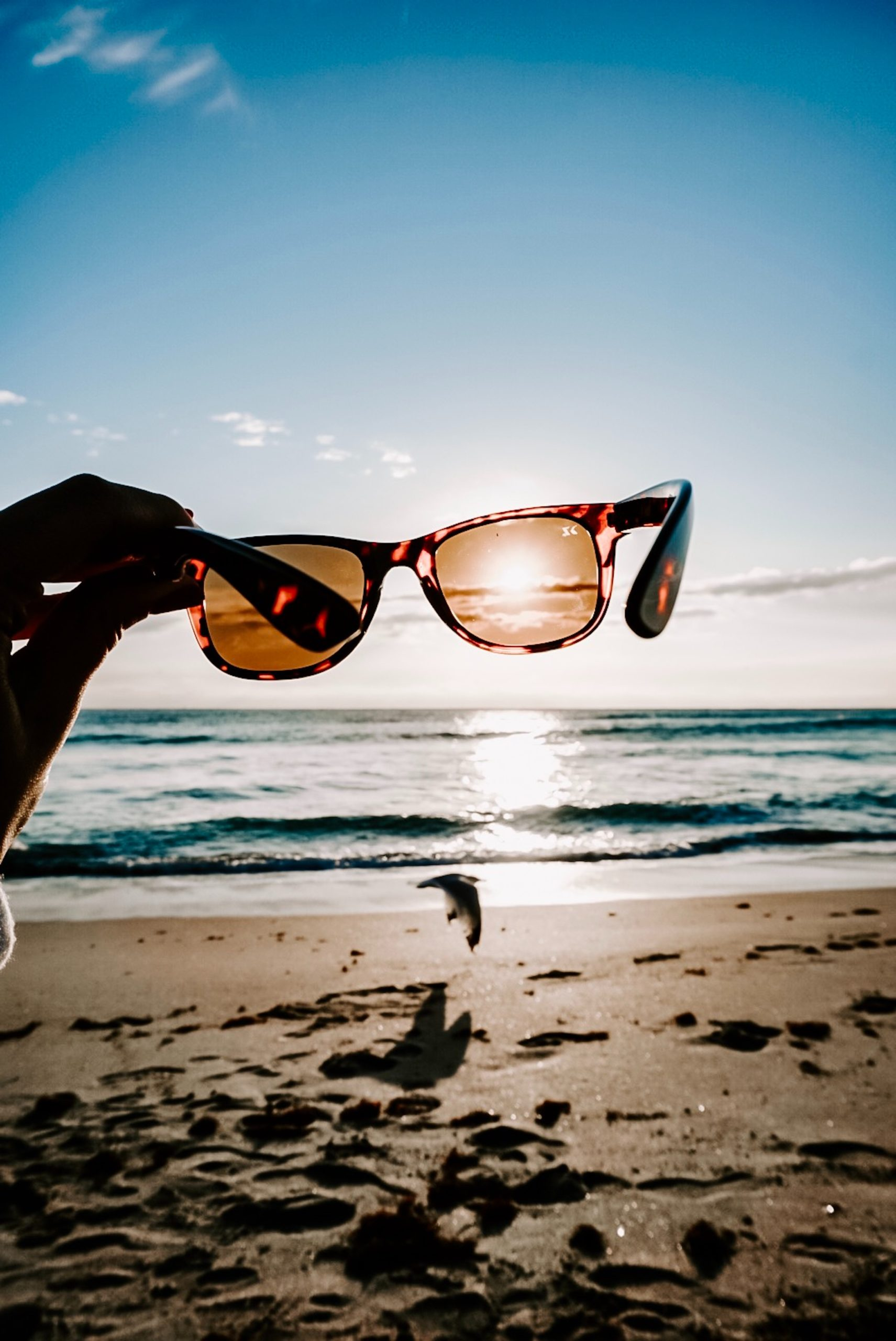 person holding sunglasses on beach during daytime